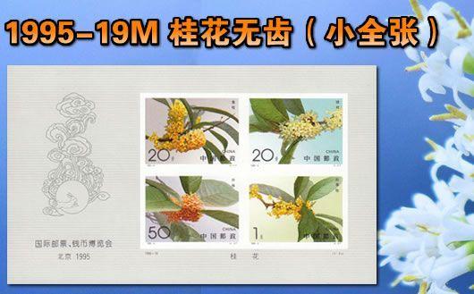 """""""1995-19M 桂花无齿(小全张)""""。小全张规格:143mm×85mm。原胶全品,欢迎购买!"""