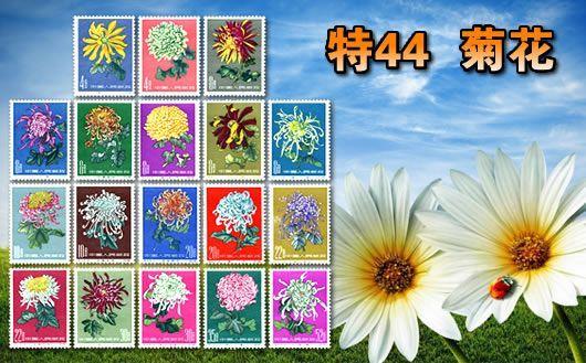 """""""特44 菊花(第一组)""""。本套邮品多枚无胶、个别细小黄,特价出售。仅此一套,售完为止!"""