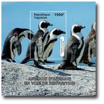 非洲动物:企鹅邮票小型张
