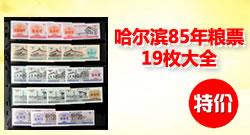 LPP352 哈尔滨85年粮票19枚大全