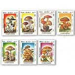 阿富汗1985年发行的《蘑菇》邮票