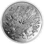 加拿大2017年2盎司花鸟鱼兽360度全视觉精制银币(需预定)