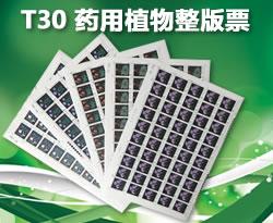 ZBP-T30 药用植物(整版票)