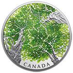 加拿大2018年2盎司枫叶树冠彩色精制大银币