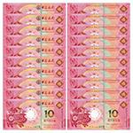 中国澳门2019年猪年生肖贺岁纪念钞一对10连号(尾四同号)