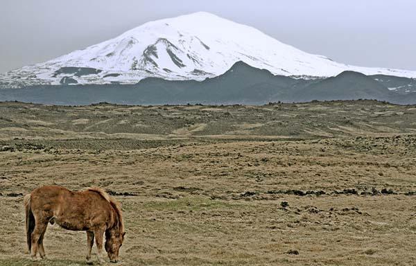 com》 背面:冰岛西南部的一座活火山——赫克拉火山 hekla 《中邮网