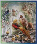 2008—4中国鸟(T)(2版合售)