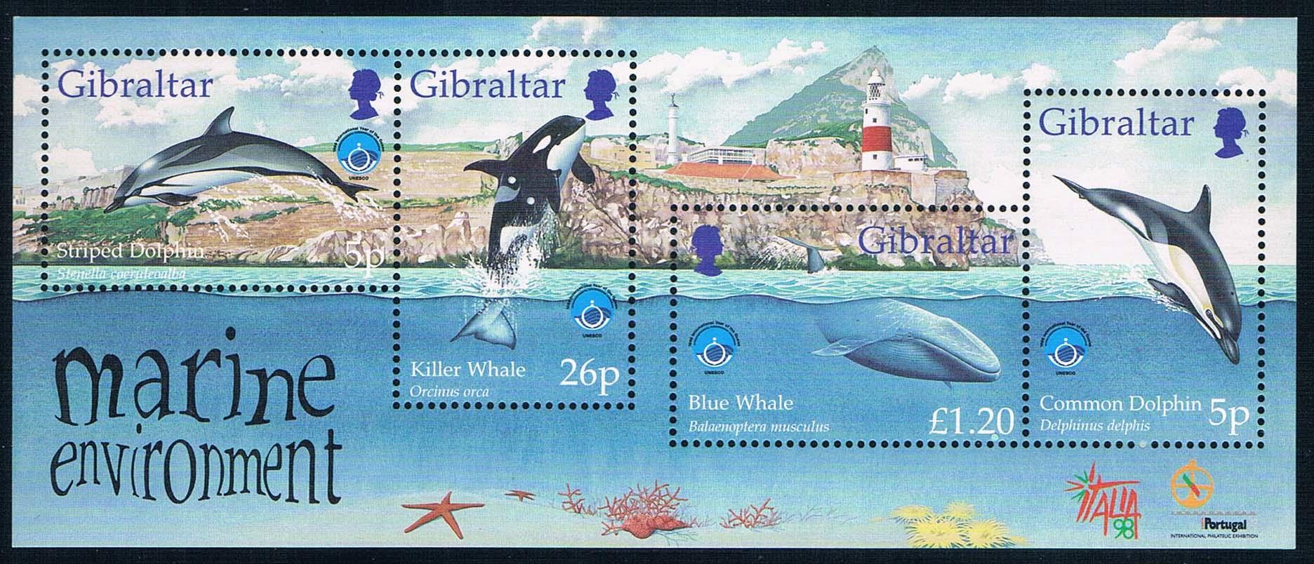 直布罗陀1998国际海洋年动物海豚全新外国邮票(大图展示)