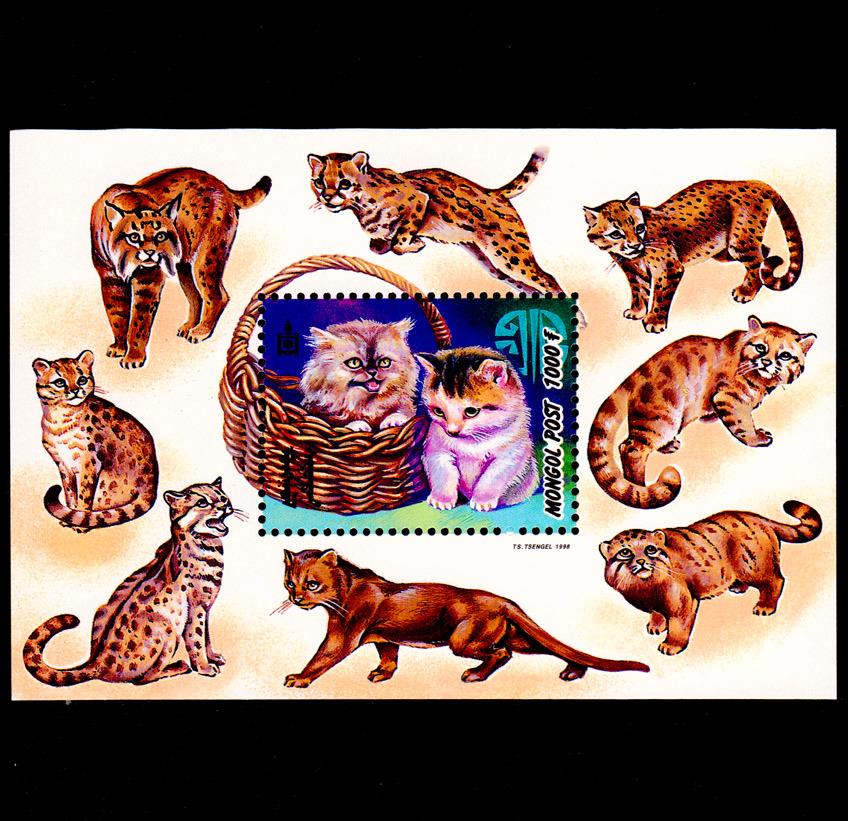 蒙古1998年发行 猫 可爱猫咪邮票小型张