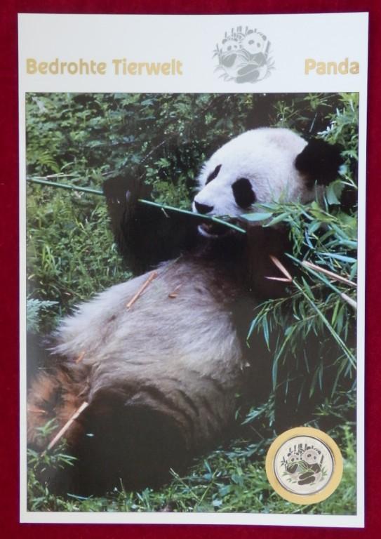 朝鲜1996年中国动物国宝大熊猫精制彩色纪念银币卡币