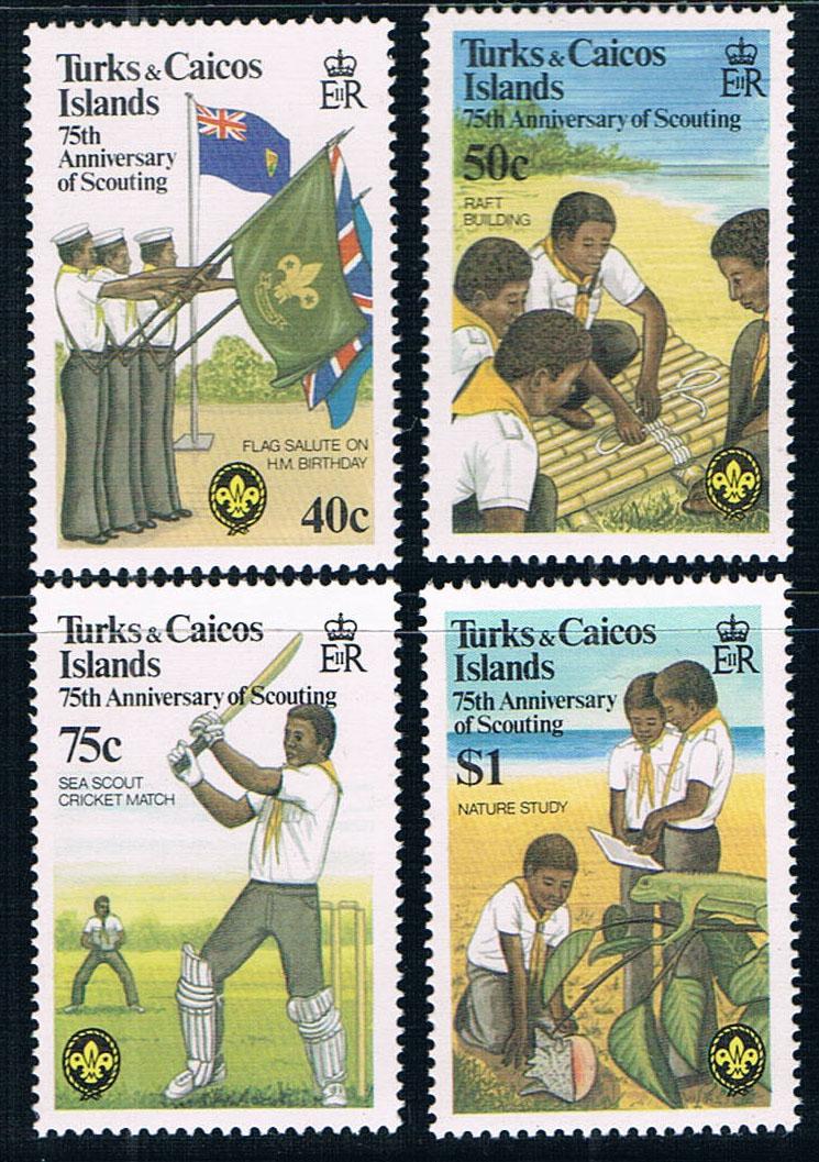 特克斯凯科斯群岛1982童子军国旗全新外国邮票(大图展示)