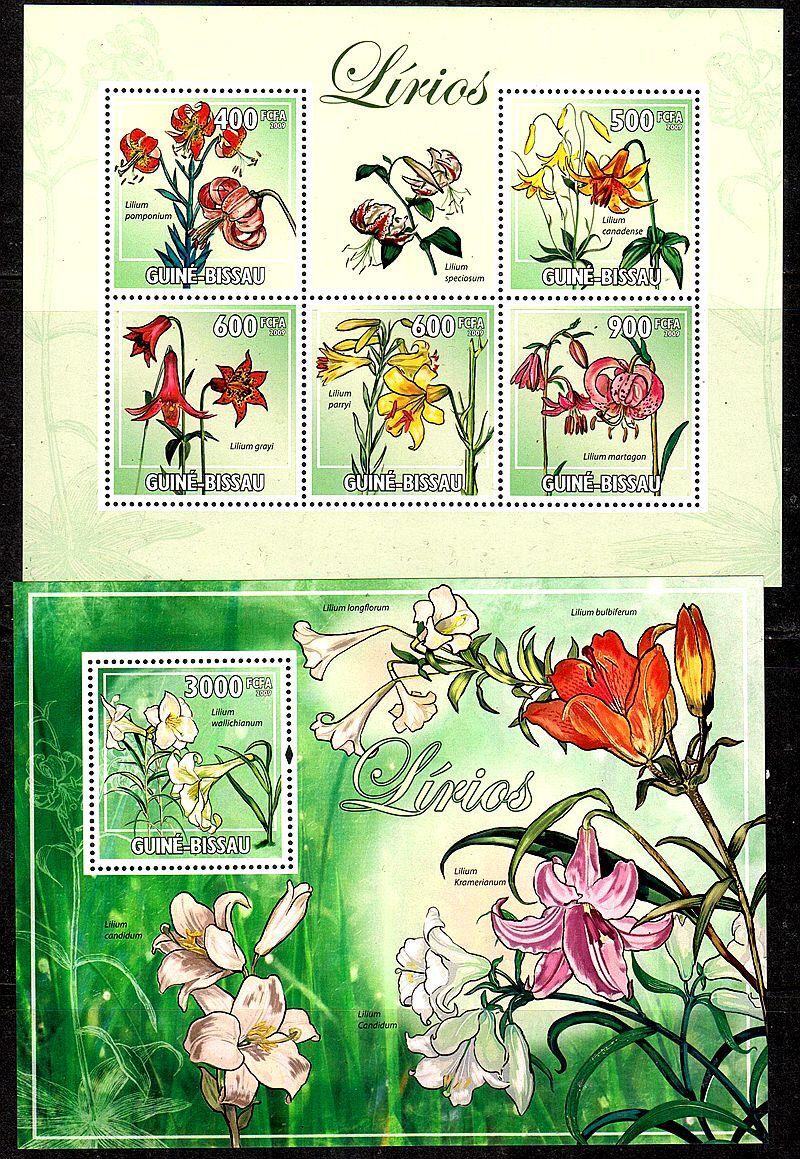 几内亚比绍2009观赏植物花卉邮票~百合2全小型张新票(大图展示)