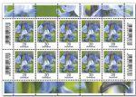 代购 德国邮票2017年花卉系列 风信子 普通邮票 小版张