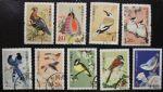 普31 中国鸟信销票全套9枚 顺戳