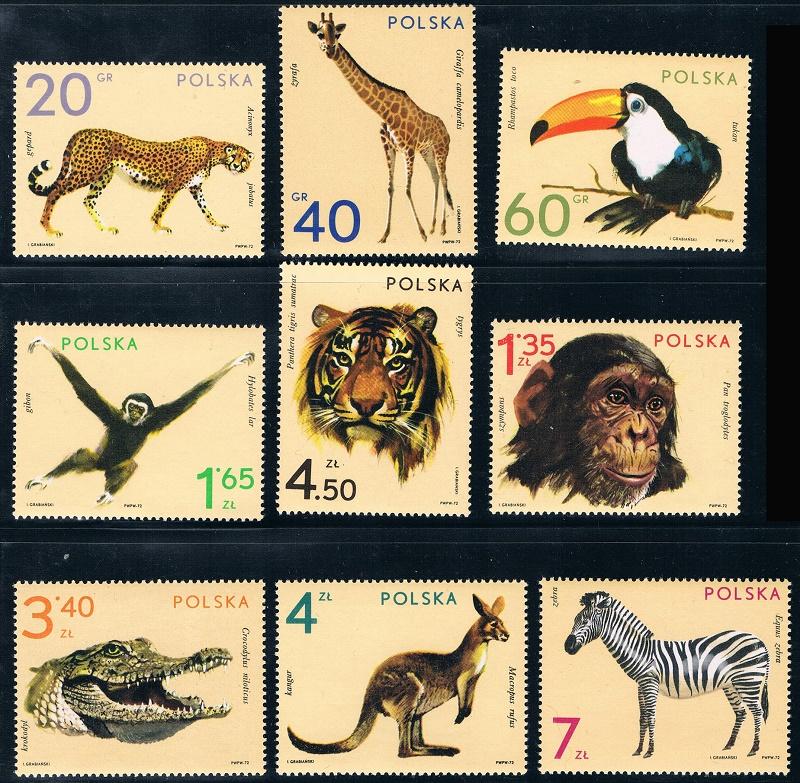 波兰1972华沙动物园(大图展示)