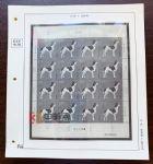RC186-A 菲勒高档2018年编年邮票整版定位页全套(79页)